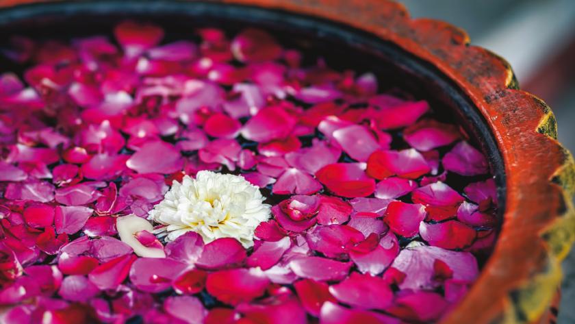 Kur. Blütenblätter schwimmen im Wasser in eienm Gefäss