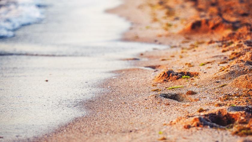 Lebensführung Fluss Strand