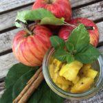 Ayurvedisches Apfel-Chutney