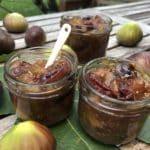 Ayurvedisches Rezept für Feigen Chutney